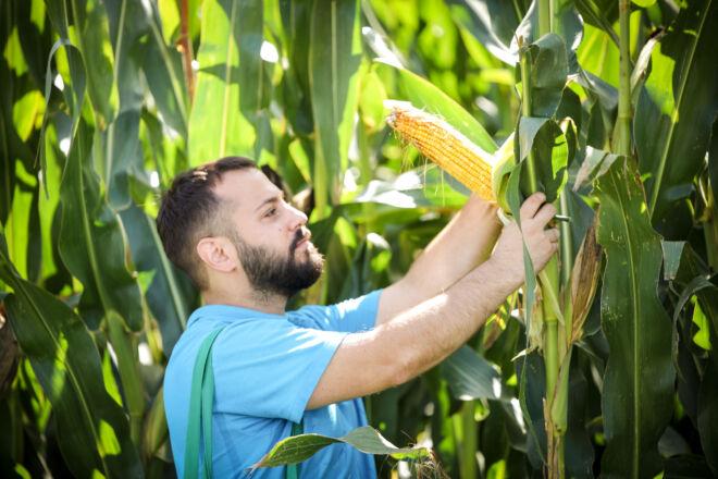 Marco Caputo agronomo della Fusco